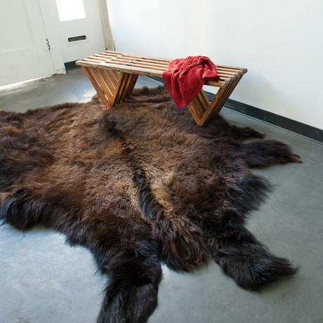 North American Buffalo Hide