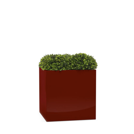 Cube (Red)