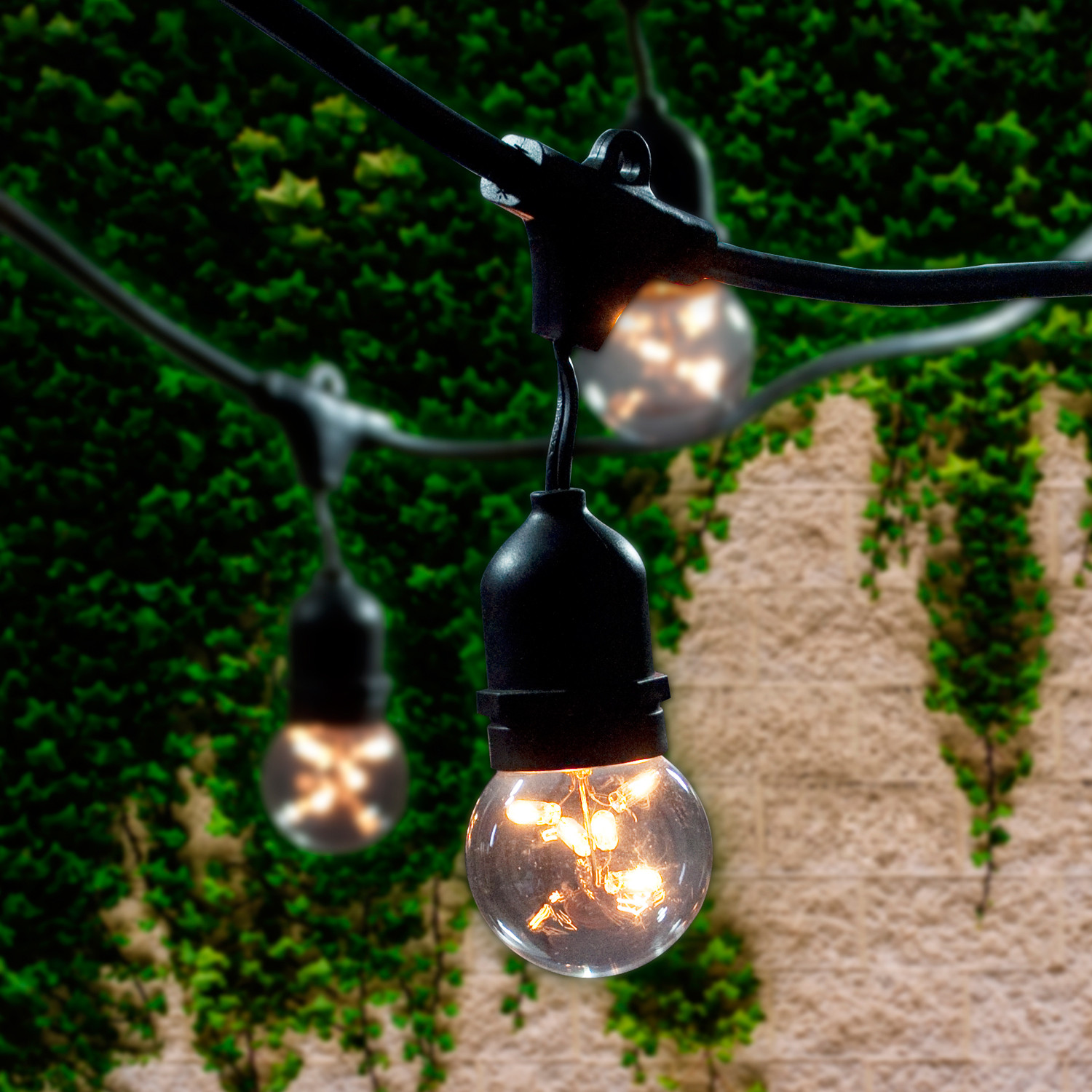 Outdoor String Light Kit // Starlight G16 Bulbs Included - Bulbrite - Touch of Modern