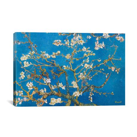 Almond Blossom // Vincent van Gogh // 1890