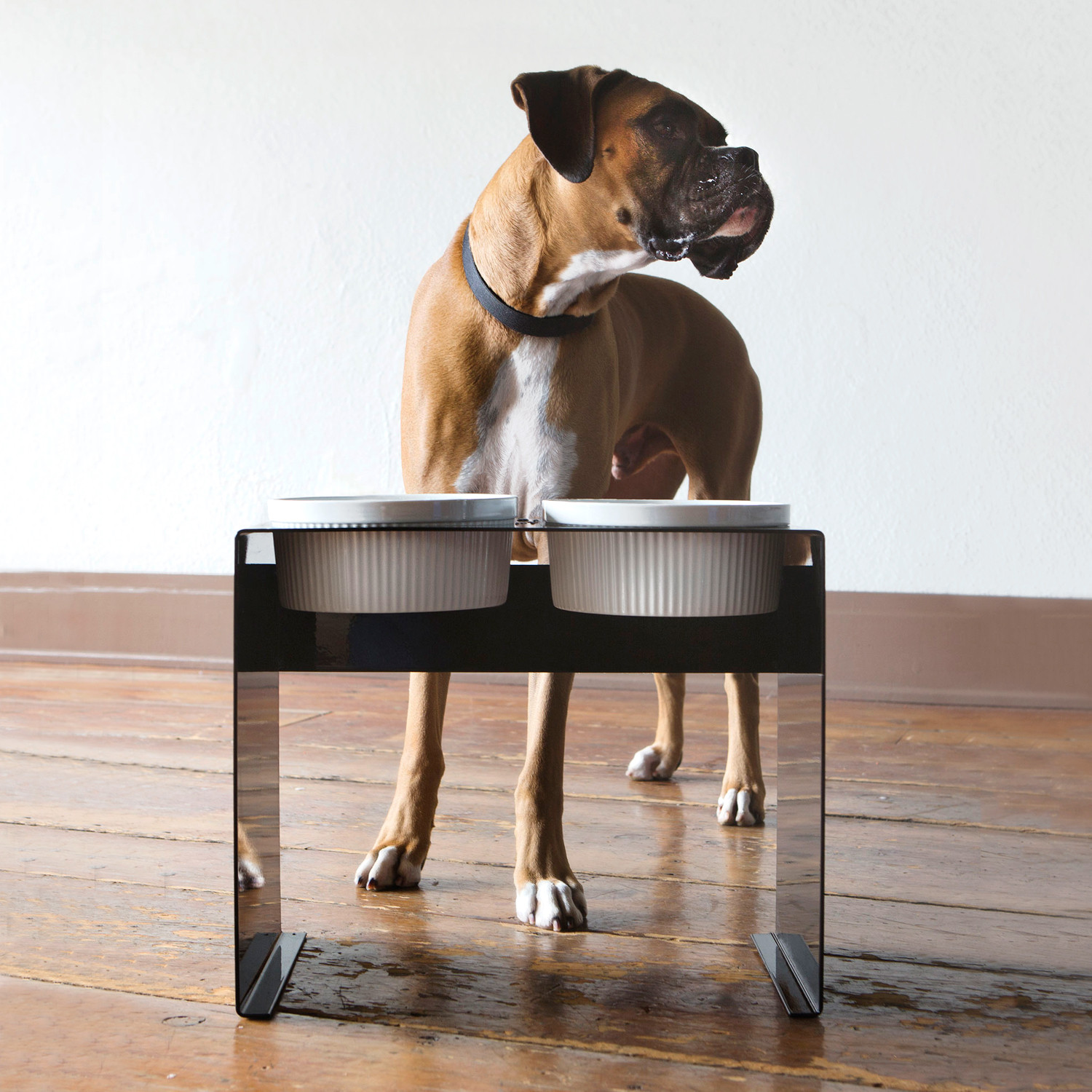 pet timers automatic complete feeder feeders reviews with table of dog best