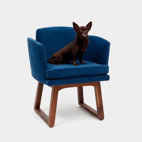 Allison Chair (Admiral)