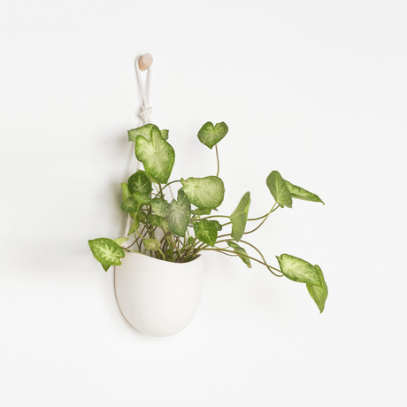 Large Ceramic And Cotton Rope Flat Back Planter