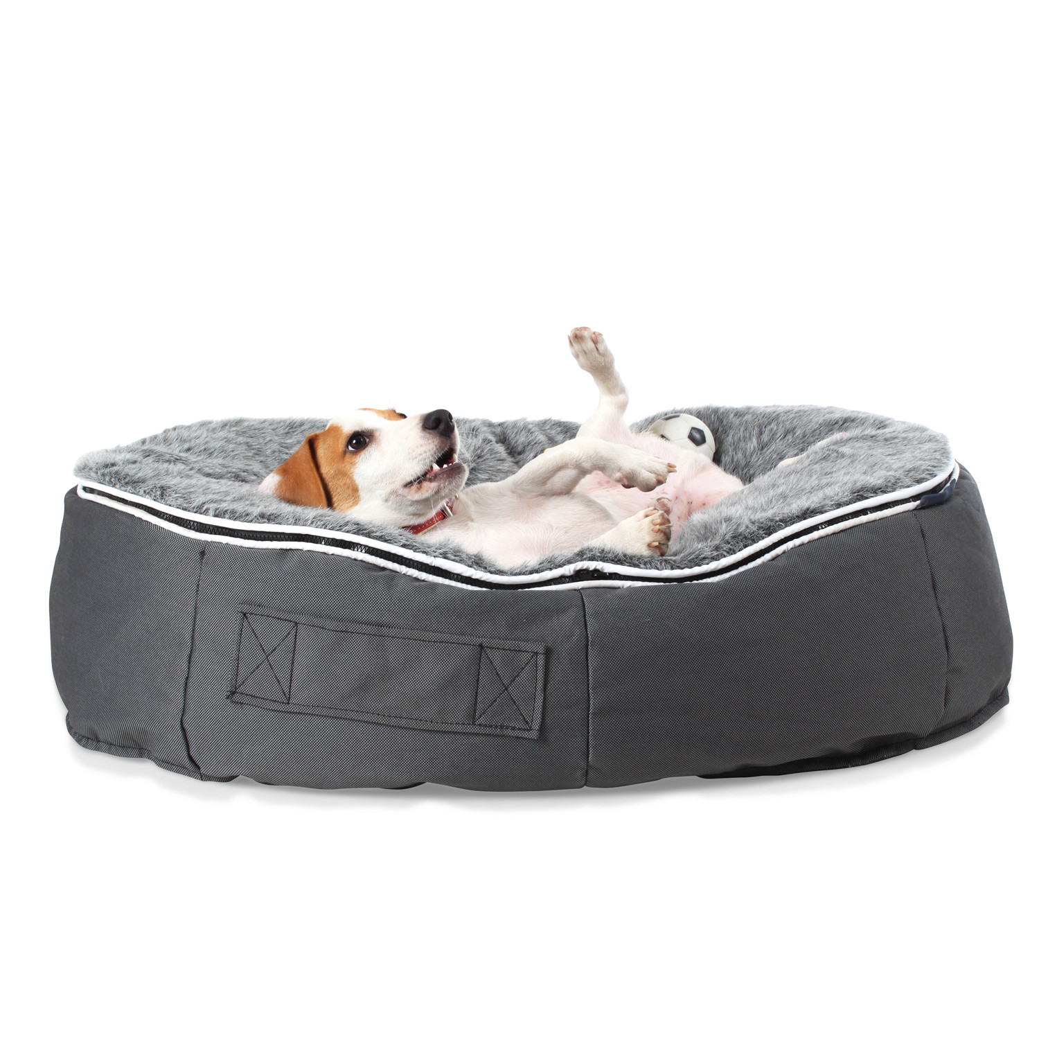 Ambient Lounge Pet Bed Ambient Pet Lounge Touch of Modern