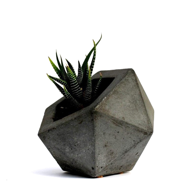 Geodesic Concrete Planter: Geodesic Planter
