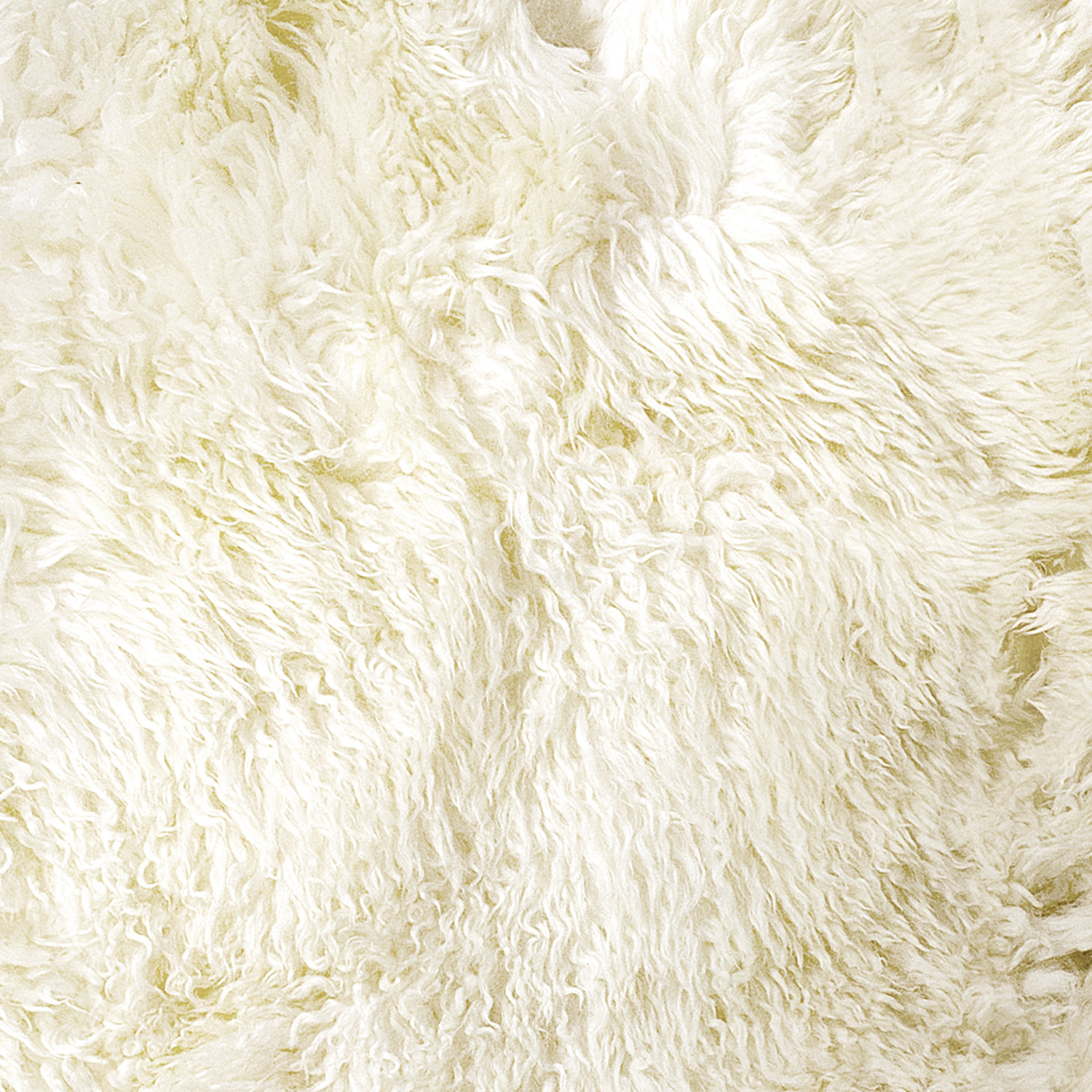 Curly Sheepskin Rugs Hide Rugs 28 Images Curly