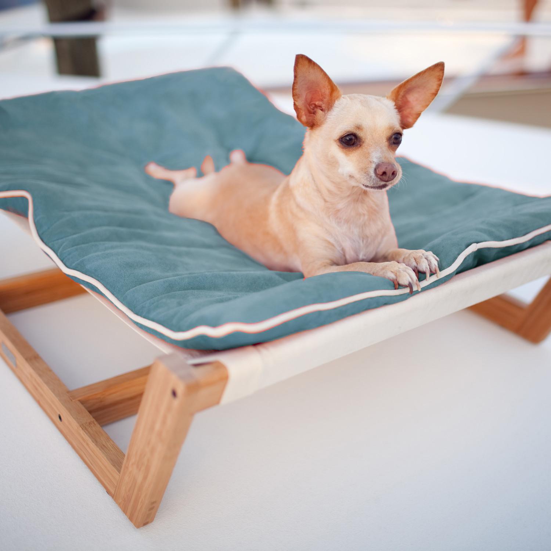 bamboo hammock    medium  berry blue  bamboo hammock    medium  berry blue    pet lounge studios   touch      rh   touchofmodern