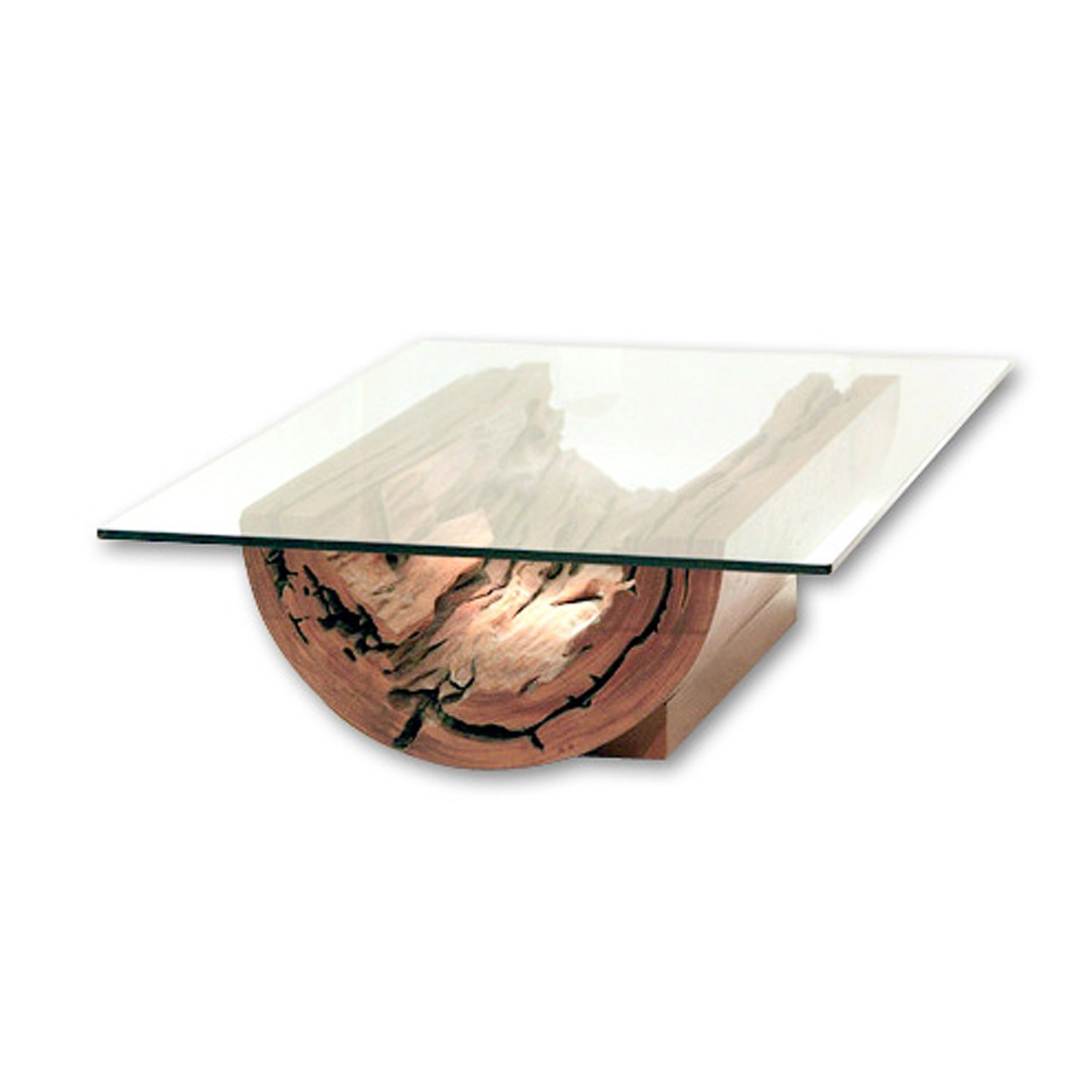 salvaged tree trunk canoa coffee table rotsen furniture touch of modern