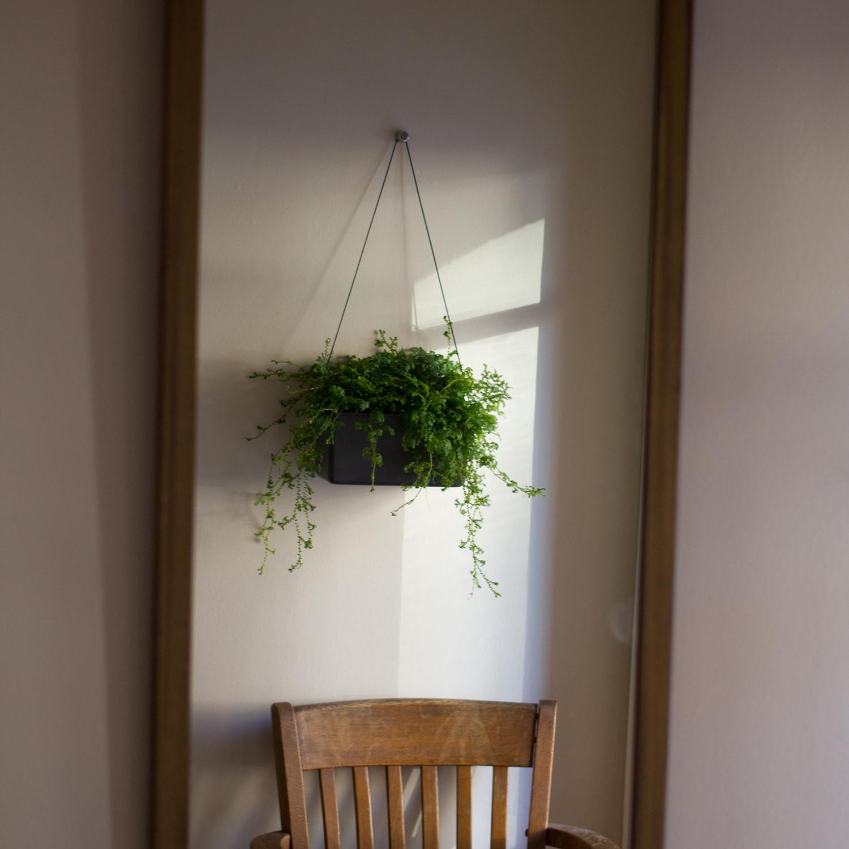 Modern Wall Planters: Hängen™ Wall Planter