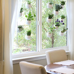Window Pods Indoor Garden // Set of 3
