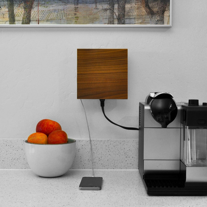Living Plug Solid Walnut Faceplate Inlet Bundle Livingplug