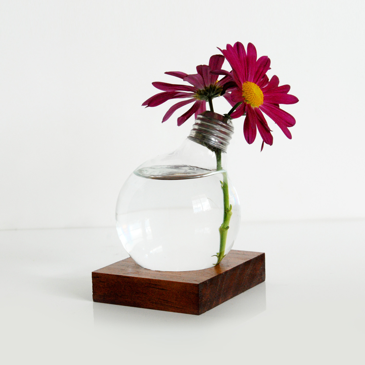 Inviting Modern And Sustainable C House By Studio Arthur: Repurposed Light Bulb // Vase With Wood Base