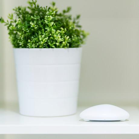 Tempo Environment Monitor // White