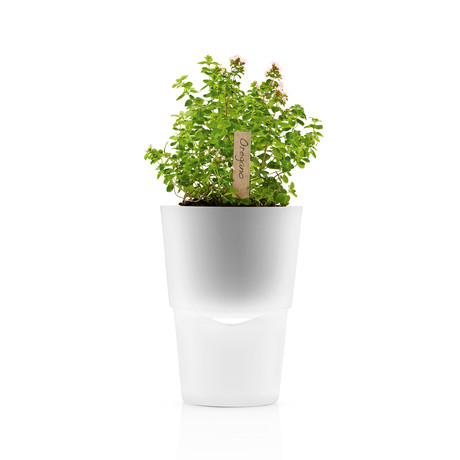 Self-Watering Herb Pot (Frosted Glass)