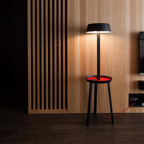 Carry // Floor Lamp