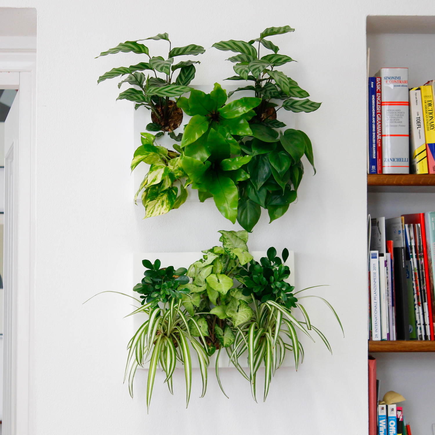 hoh  wall planter (white)  hoh  touch of modern - wall planter (white)