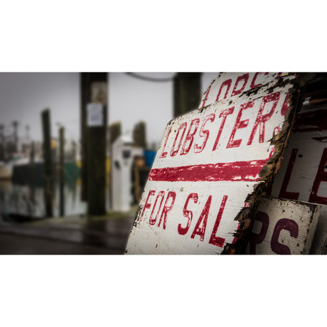 Lobsters for Sale