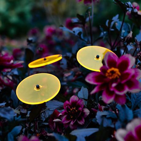 Boeket van Zonnebloemen // Set van 3 // Yellow