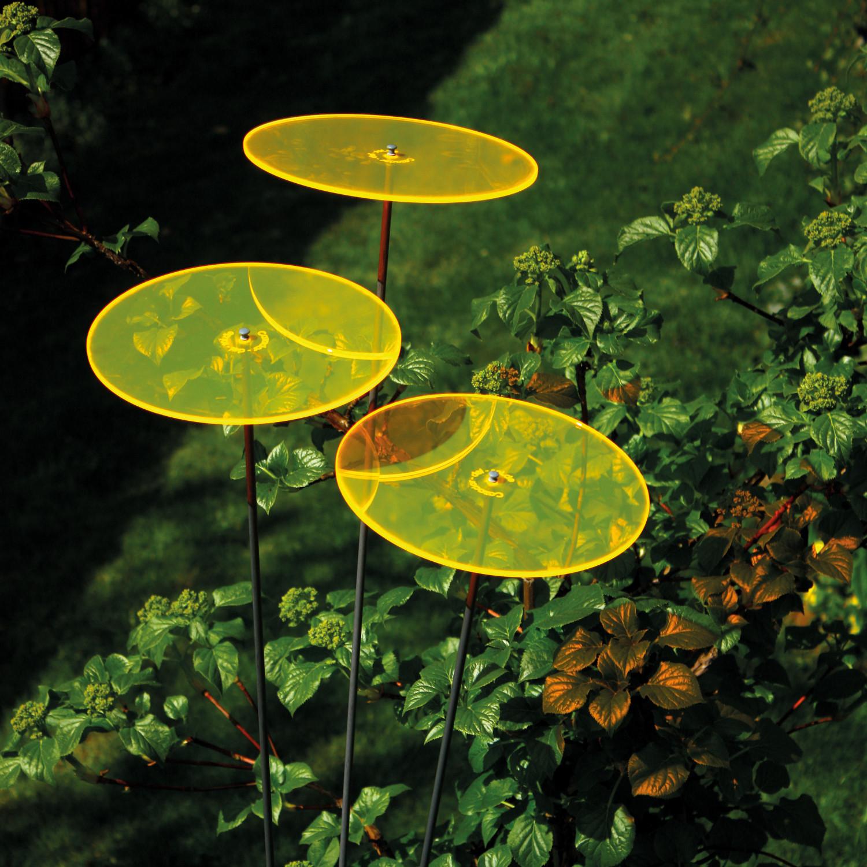 Cazador-Del-Sol ® // Set of 9 // Yellow - Cazador-Del-Sol® - Touch