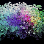 1000 Color Puzzle