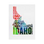 Idaho (Rainbow)