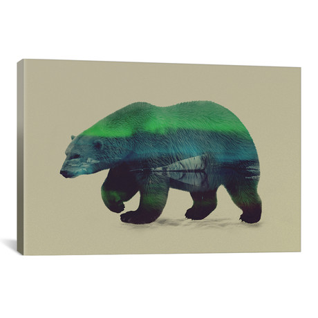"Northern Light for Polar Bear (26""W x 18""H x 0.75""D)"