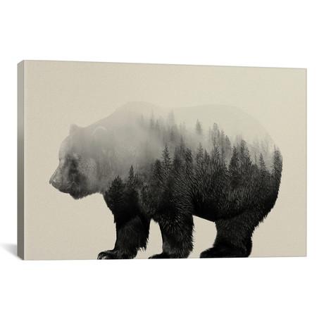 "Bear in the Mist // Andreas Lie (26""W x 18""H x 0.75""D)"