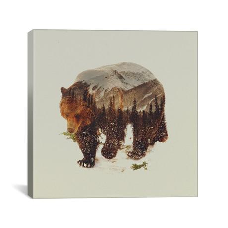 """Bear I (18""""W x 18""""H x 0.75""""D)"""