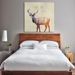 """Deer I (18""""W x 18""""H x 0.75""""D)"""