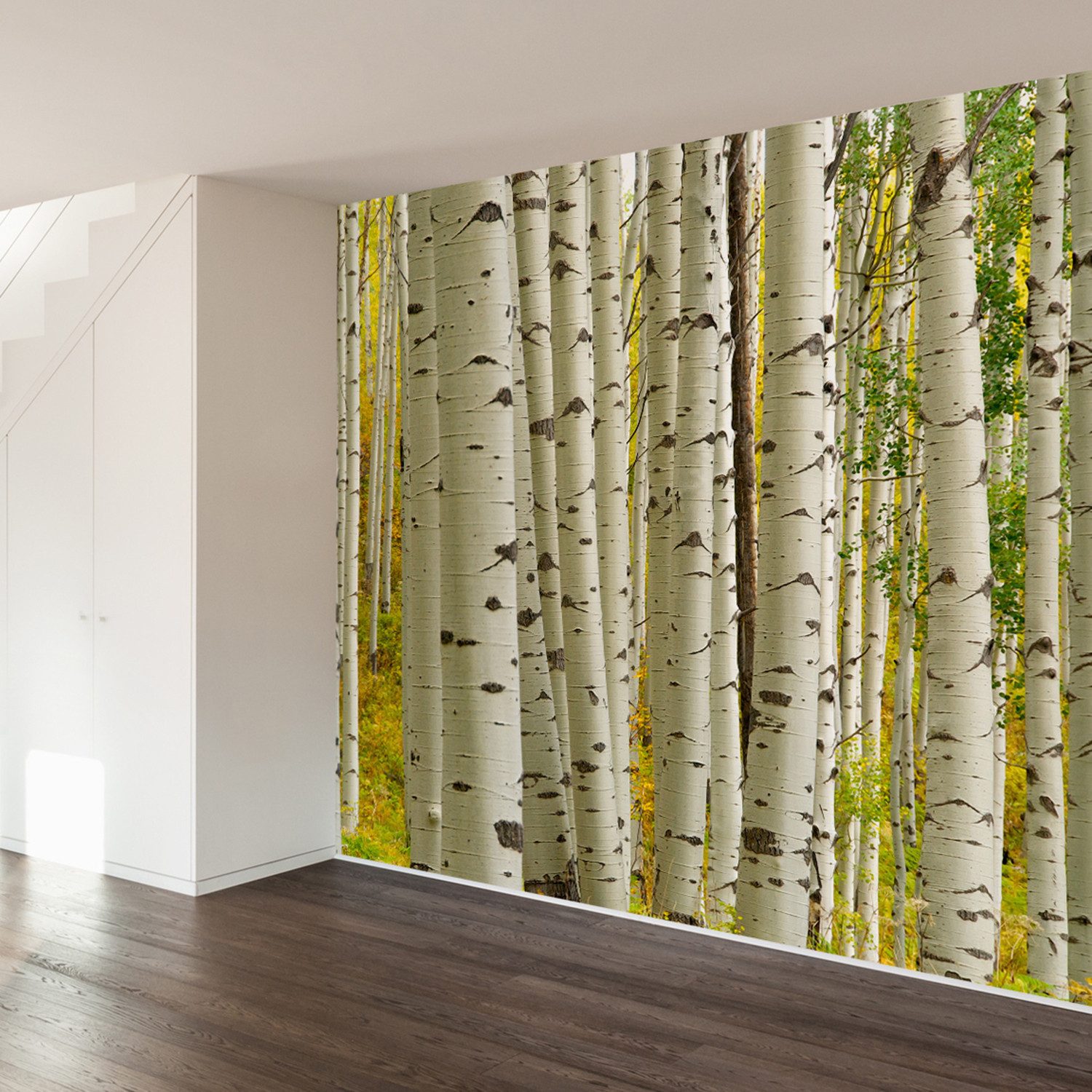 Birch forest wall mural decal 4 panels 93 width for Birch wall mural