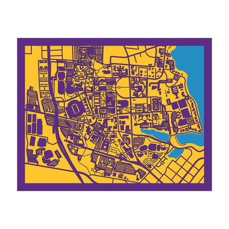 Louisiana State University Campus