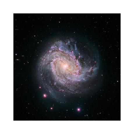 "M83 - Spiral Galaxy // Hubble-Magellan Composite (12""W x 12""H)"