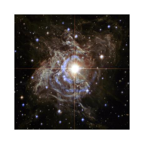 "Cepheid Variable Star (12""W x 12""H)"