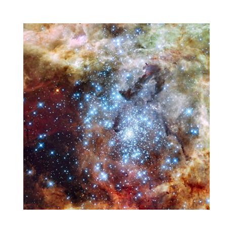 "Merging Clusters in 30 Doradus (12""W x 12""H)"