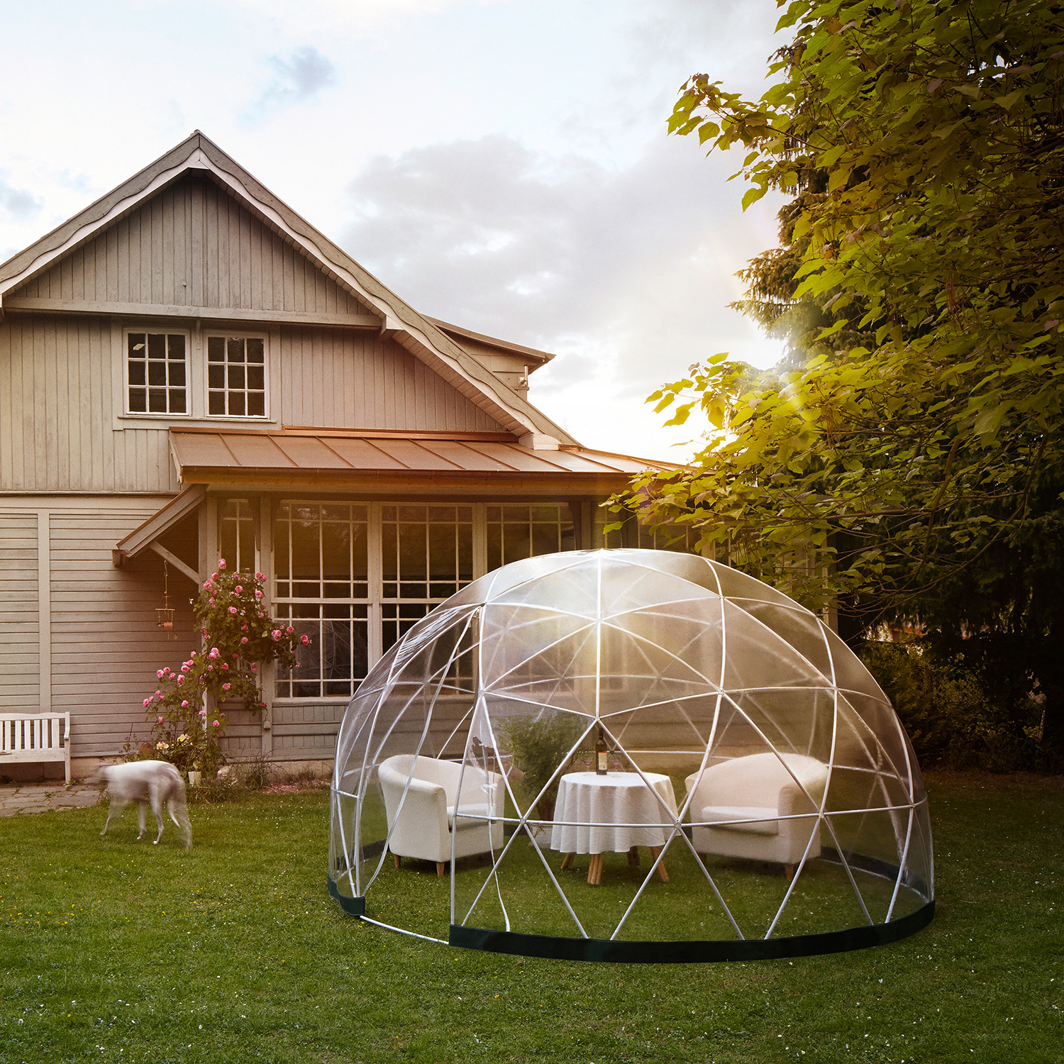 Garden Igloo - Garden Igloo - Touch of Modern
