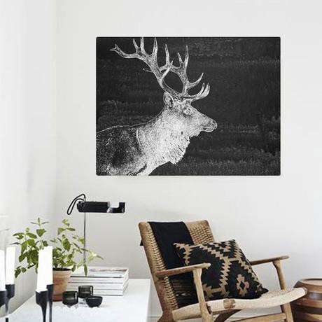 Elk In The Night