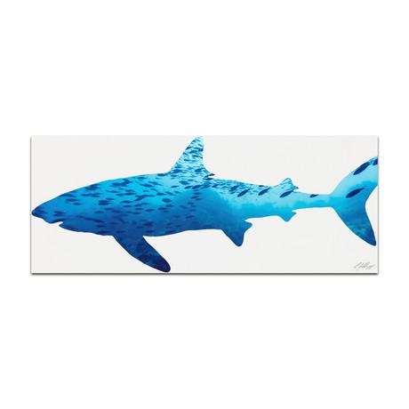 Shark Seascape