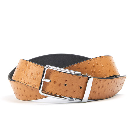 textuur Traditionele Belt // Tan