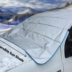 Magnetic Iceshield // Pickup Plus
