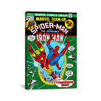 """Marvel Comic Book Spider-Man Marvel Team Up Issue Cover #9 (18""""W x 26""""H x 0.75""""D)"""