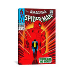 "Marvel Comic Book Spider-Man Issue Cover #50 (18""W x 26""H x 0.75""D)"