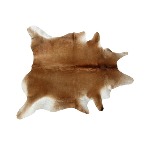 Cowhide Rug // 045803 // Camel - Pasargad - Touch of Modern