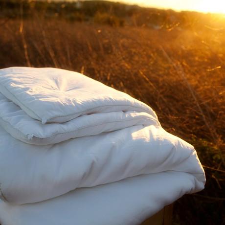 Silk Comforter // All Season (Twin)