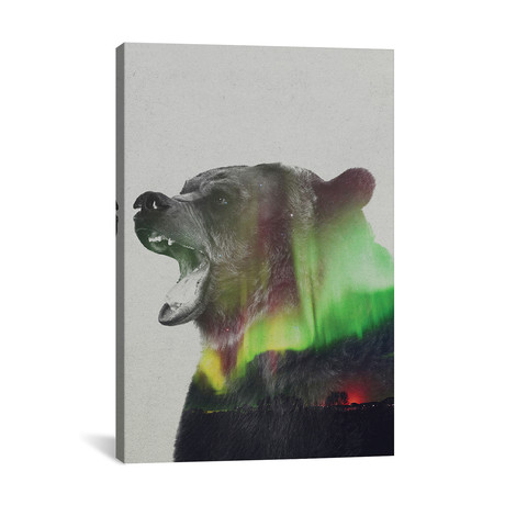 "Bear // Andreas Lie (18""W x 26""H x 0.75""D)"