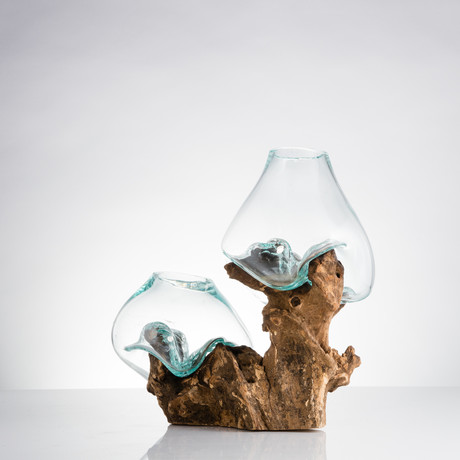 Gamal Root + Two Molten Glass Vases