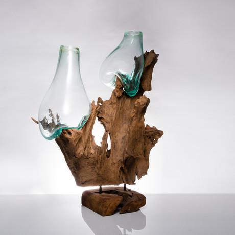 Teak Root + Two Molten Glass Vases (Medium)