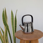 Teapot + Strainer (Silver + Black Handle)