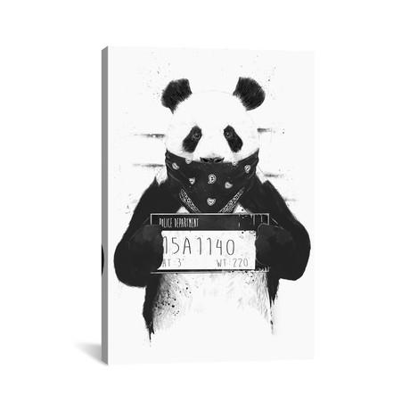 """Bad Panda // Balazs Solti (26""""H x 18""""W x 0.75""""D)"""