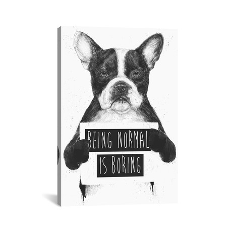 """Being Normal Is Boring (18""""W x 26""""H x 0.75""""D)"""