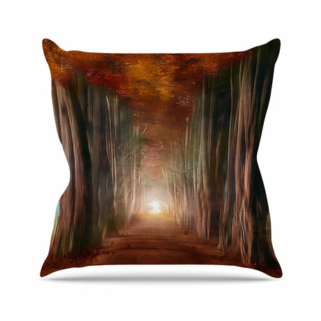 True Modern Pillows : Viviana Gonzalez - For Kess InHouse - Touch of Modern